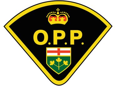 toronto police logo